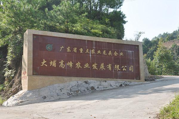 热烈庆祝大埔高峰农业发展有限公司头头电子竞技app成功上线!